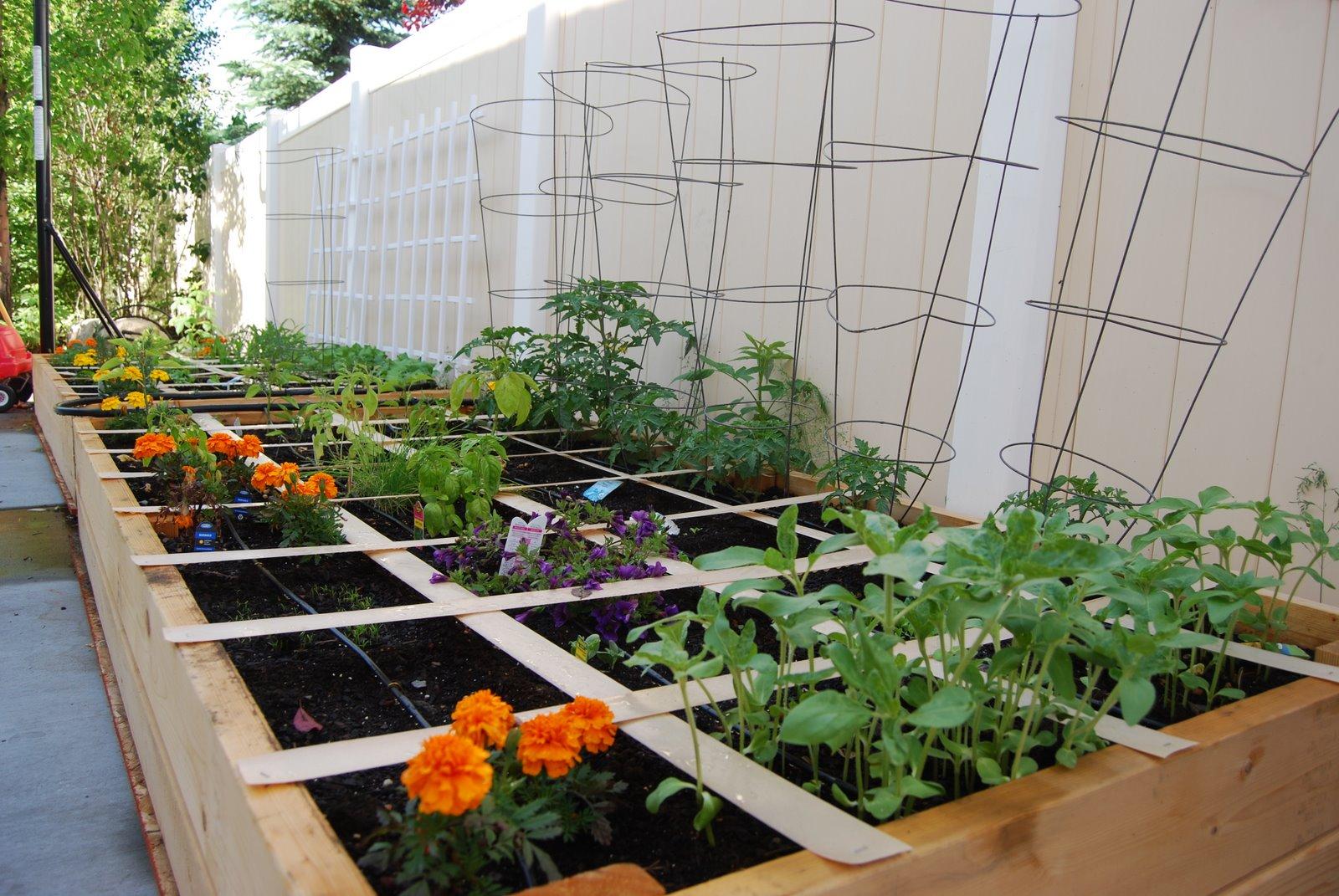 gardening my blog. Black Bedroom Furniture Sets. Home Design Ideas