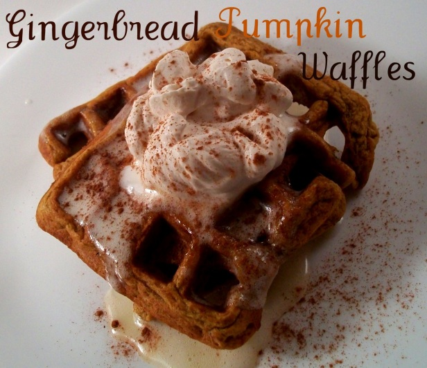 https://importtestsite.files.wordpress.com/2010/12/gingerbreadpumpkinwaffles.jpg?w=300